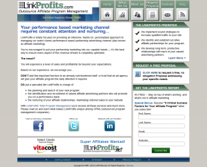 LinkProfits.com full-size home page image