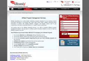 Ebrandz.com Affiliate management service overview page full size iamge