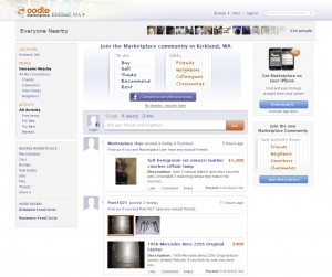 Oodle.com Top Classified Ad Site home page full size image