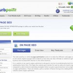 Blurbpoint On-Page SEO thumbnail image