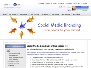 SubmitInMe.com Social Media Marketing Management Service page full size image