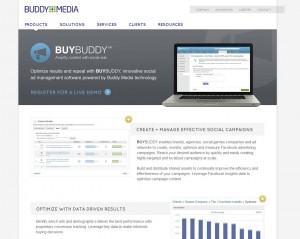 BuddyMedia.com FB Ads Management Software page full size image