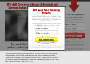 TheLocalMarketingSystem.com Local Marketing Training home page full size image
