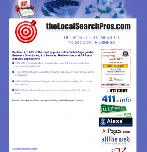 TheLocalSearchPros.com Local Business Directory Listing service home page full size image