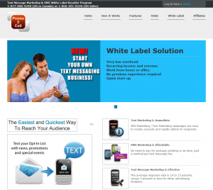 Promo2Cell.net SMS/Text Marketing Software home page full size image