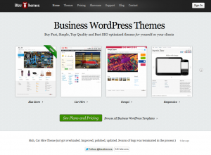 BizThemes.com Wordpress SEO Themes home page full size image