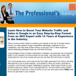 Professional's Training Course in SEO thumbnail image