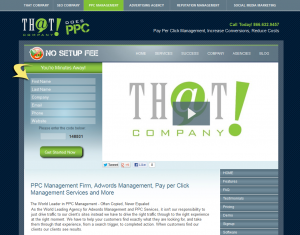 PPCManagement.com SEM/PPC Management service home page full size image
