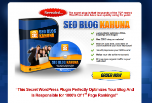 SEOBlogKahuna.com Wordpress SEO Plugin home page full size image
