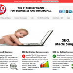 The SEO System thumbnail image