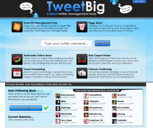 TweetBig.com Twitter Management Tools home page full size image