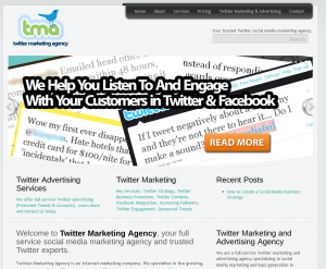 TwitterMarketingAgency.com Twitter Marketing Services home page full size image