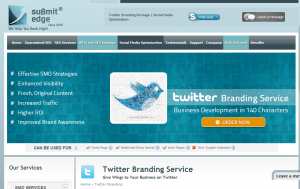 SubmitEdge Twitter Marketing service (submitedge.com/twitter-branding) overview page full size image
