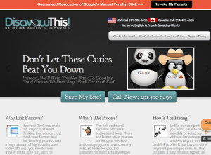 DisavowThis.com Backlink audit and Removal service home page full size image