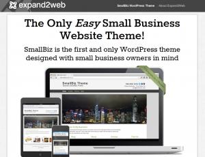 SmallBiz Theme (smallbiztheme.com) home page full size image